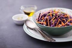Κόκκινο λάχανο, καρότο, κρεμμύδι και σαλάτα νεαρών βλαστών ραδικιών Στοκ εικόνες με δικαίωμα ελεύθερης χρήσης