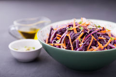 Κόκκινο λάχανο, καρότο, κρεμμύδι και σαλάτα νεαρών βλαστών ραδικιών Στοκ φωτογραφία με δικαίωμα ελεύθερης χρήσης