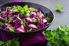 Κόκκινο λάχανο, σαλάτα κρεμμυδιών ραδικιών και άνοιξη Στοκ φωτογραφία με δικαίωμα ελεύθερης χρήσης
