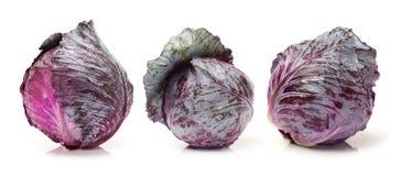 Κόκκινο λάχανο Στοκ Εικόνες