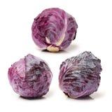 Κόκκινο λάχανο Στοκ Φωτογραφίες