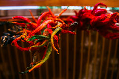 Κόκκινο ένωσης - καυτό πιπέρι τσίλι Στοκ φωτογραφία με δικαίωμα ελεύθερης χρήσης