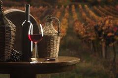 κόκκινο ακίνητο κρασί ζωή&sigmaf Στοκ εικόνες με δικαίωμα ελεύθερης χρήσης