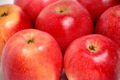 κόκκινο ανασκόπησης μήλων Στοκ Εικόνες