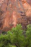 κόκκινο απότομων βράχων Στοκ φωτογραφία με δικαίωμα ελεύθερης χρήσης