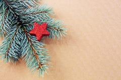 Κόκκινο αστέρι στον πράσινο κομψό κλάδο που απομονώνεται Στοκ φωτογραφία με δικαίωμα ελεύθερης χρήσης