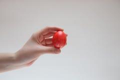 Κόκκινο αυγό Πάσχας στο θηλυκό χέρι Στοκ φωτογραφία με δικαίωμα ελεύθερης χρήσης