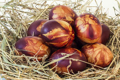 Κόκκινο αυγών Πάσχας που βάφεται που διακοσμείται με τις σφραγίδες φύλλων που τοποθετούνται στο σανό Στοκ Εικόνα