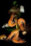 κόκκινο γαρίδων μεσημερι Στοκ Εικόνες