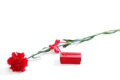 Κόκκινο γαρίφαλο με το κιβώτιο δώρων Στοκ Φωτογραφία