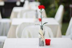 Κόκκινο γαρίφαλο στο γυαλί Στοκ Φωτογραφία