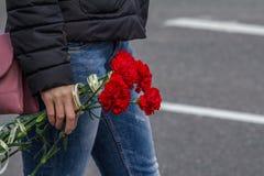 κόκκινο γαρίφαλων Στοκ Φωτογραφία