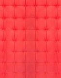 Κόκκινο γεμισμένο δέρμα Στοκ Εικόνα