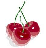 Κόκκινο γλυκό κεράσι που απομονώνεται στο λευκό ελεύθερη απεικόνιση δικαιώματος