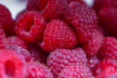 κόκκινο γλυκό rubus σμέουρων idaeus Στοκ φωτογραφία με δικαίωμα ελεύθερης χρήσης