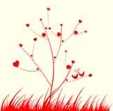 κόκκινο δέντρο Στοκ φωτογραφίες με δικαίωμα ελεύθερης χρήσης
