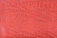 κόκκινο δέρμα κροκοδείλων κατασκευασμένο Στοκ Φωτογραφία