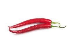 κόκκινο δύο πιπεριών καψίματος Στοκ Φωτογραφία