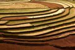 κόκκινο εδάφους στοκ εικόνα με δικαίωμα ελεύθερης χρήσης