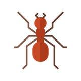 Κόκκινο εικονίδιο μυρμηγκιών διανυσματική απεικόνιση