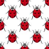 Κόκκινο εκλεκτής ποιότητας άνευ ραφής σχέδιο ladybugs Στοκ Φωτογραφία