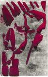 Κόκκινο επικεφαλής πανκ Στοκ Εικόνα