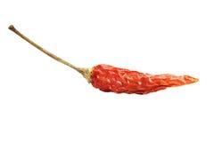 κόκκινο λευκό πιπεριών τσί στοκ φωτογραφίες με δικαίωμα ελεύθερης χρήσης
