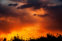 Κόκκινο ηλιοβασίλεμα και κάλαμοι σύννεφων Στοκ Εικόνες