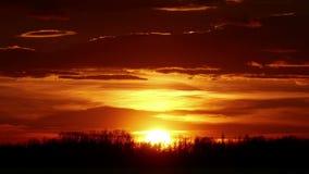 Κόκκινο ηλιοβασίλεμα πέρα από τα δέντρα απόθεμα βίντεο