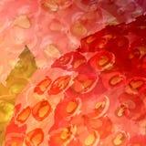 κόκκινο θαμπάδων Στοκ φωτογραφία με δικαίωμα ελεύθερης χρήσης
