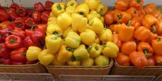 Κόκκινο κίτρινο και πορτοκαλί πιπέρι κουδουνιών χρώματος Στοκ φωτογραφία με δικαίωμα ελεύθερης χρήσης