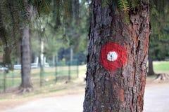 Κόκκινο και άσπρο κυκλικό σημάδι ιχνών πεζοπορίας στο φλοιό δέντρων Ίχνος αριθμός που γράφεται ένα κάτω από Ρηχό διαμέρισμα της ε Στοκ Φωτογραφία