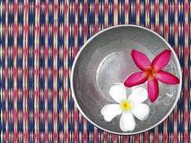 Κόκκινο και άσπρο λουλούδι frangipani ή plumeria που επιπλέει στην επιφάνεια νερού στο ασημένιο κύπελλο στο ταϊλανδικό χαλί ύφανσ Στοκ φωτογραφία με δικαίωμα ελεύθερης χρήσης
