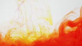 Κόκκινο και κίτρινο ακρυλικό χρώμα που κινείται στο νερό στο άσπρο υπόβαθρο Μελάνι που στροβιλίζεται στο νερό που δημιουργεί τα α