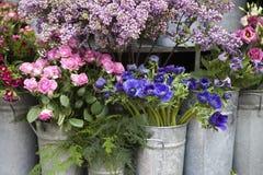 Κόκκινο και μπλε λουλούδι άνοιξη: anemones, ranoncullus και Στοκ εικόνα με δικαίωμα ελεύθερης χρήσης