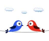 Κόκκινο και μπλε πουλί στο καλώδιο Στοκ Εικόνα