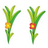 Κόκκινο και πορτοκαλί λουλούδι Στοκ Φωτογραφία