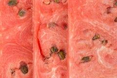 Κόκκινο καρπουζιών, καρπούζι τριών μούρων φετών με τους νωπούς καρπούς σπόρων Όμορφο, ζωηρό υπόβαθρο Στοκ Φωτογραφία