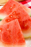 κόκκινο καρπούζι φετών κιν Στοκ εικόνες με δικαίωμα ελεύθερης χρήσης