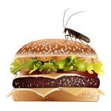 κόκκινο κατσαρίδων Στοκ εικόνα με δικαίωμα ελεύθερης χρήσης