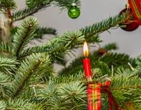 Κόκκινο κερί με τη φλόγα στο φυσικό χριστουγεννιάτικο δέντρο Στοκ φωτογραφία με δικαίωμα ελεύθερης χρήσης