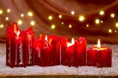 Κόκκινο κερί Χριστουγέννων τέσσερα για την εμφάνιση και το φως Στοκ εικόνες με δικαίωμα ελεύθερης χρήσης