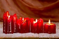 Κόκκινο κερί Χριστουγέννων τέσσερα για την εμφάνιση Στοκ Εικόνες