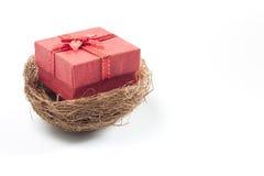 κόκκινο κιβώτιο δώρων στη φωλιά που απομονώνεται στο άσπρο υπόβαθρο στοκ φωτογραφία