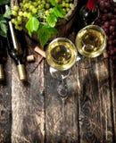 κόκκινο κρασί γυαλιού ανασκόπησης Άσπρο και κόκκινο κρασί με τους κλάδους των σταφυλιών Στοκ Φωτογραφία