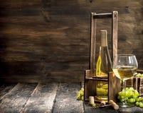 κόκκινο κρασί γυαλιού ανασκόπησης Άσπρο κρασί σε μια στάση με τους κλάδους των φρέσκων σταφυλιών Στοκ εικόνες με δικαίωμα ελεύθερης χρήσης