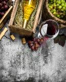 κόκκινο κρασί γυαλιού ανασκόπησης Κόκκινο και άσπρο κρασί από τα φρέσκα σταφύλια Στοκ φωτογραφία με δικαίωμα ελεύθερης χρήσης
