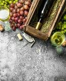 κόκκινο κρασί γυαλιού ανασκόπησης Κόκκινο και άσπρο κρασί από τα φρέσκα σταφύλια Στοκ Εικόνα