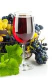 Κόκκινο κρασί γυαλιού με τα σταφύλια συστάδων Στοκ Εικόνες