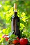 κόκκινο κρασί μήλων Στοκ Εικόνες